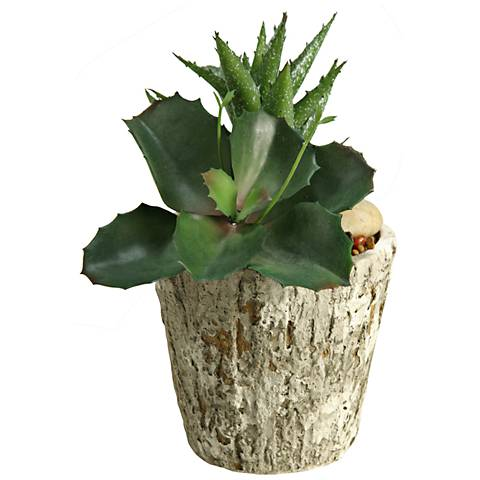 "Wild Succulent and Aloe 9""H Faux Plant in Cement Planter"
