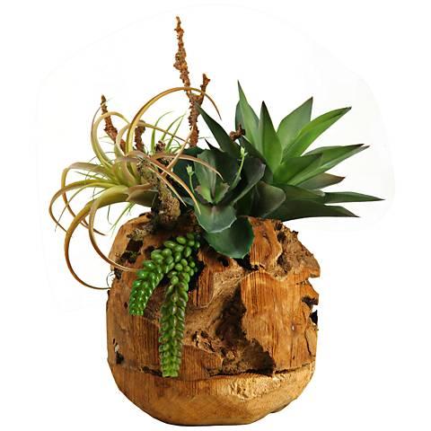 """Air Tillandsia Agave Plant Wild Succulent 17 1/2""""H Faux Plant"""