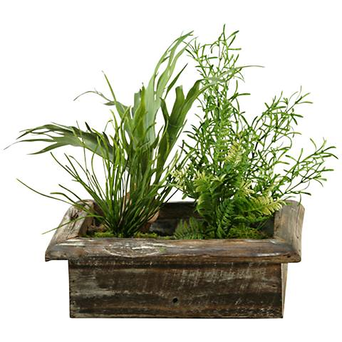 "Mini Staghorn Fern and Wild Asparagus 19""W Faux Plant"