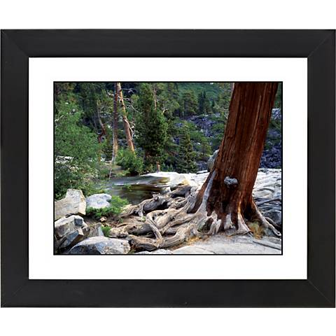 """Red Tree Black Frame Giclee 23 1/4"""" Wide Wall Art"""