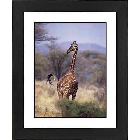 "Serengeti Giraffe Black Frame Giclee 23 1/4"" High Wall Art"