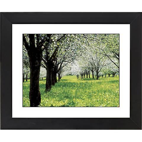 "Springtime Black Frame Giclee 23 1/4"" Wide Wall Art"
