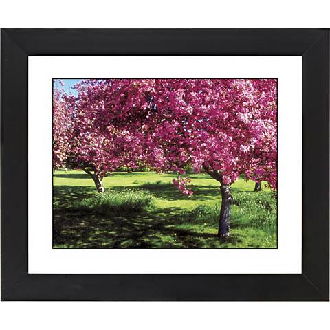 "Spring Trees Black Frame Giclee 23 1/4"" Wide Wall Art"