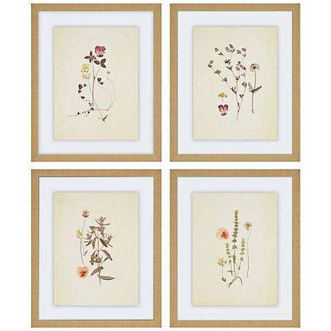 """Herbarium 4-Piece 22"""" High Framed Wall Art Set"""