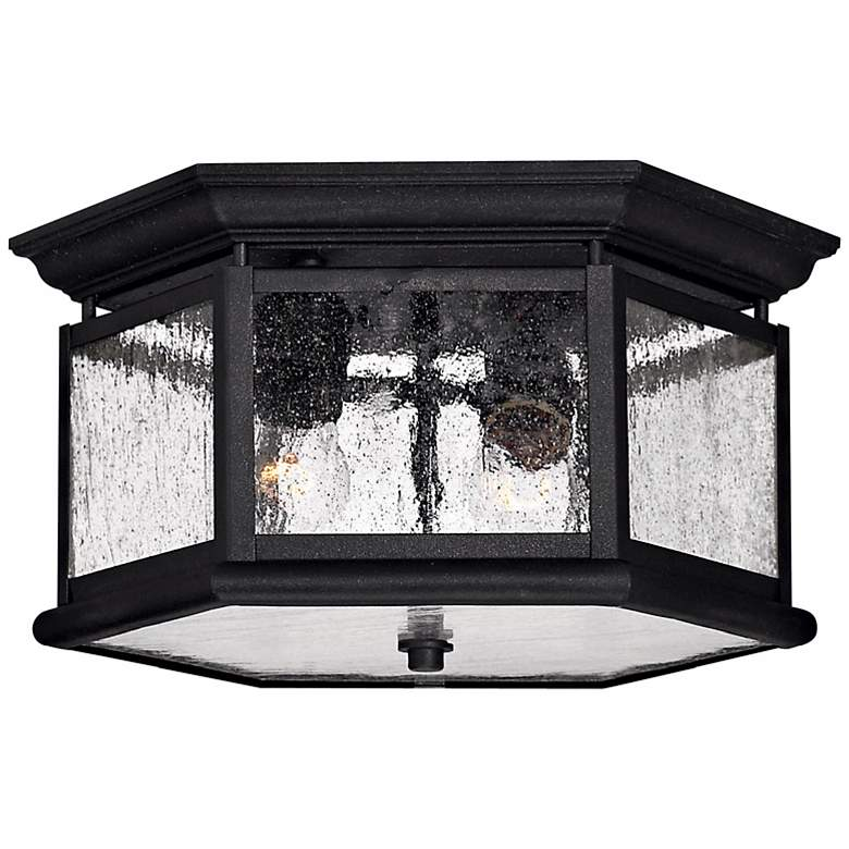 """Hinkley Raley Collection 13"""" Wide Black Ceiling Light"""