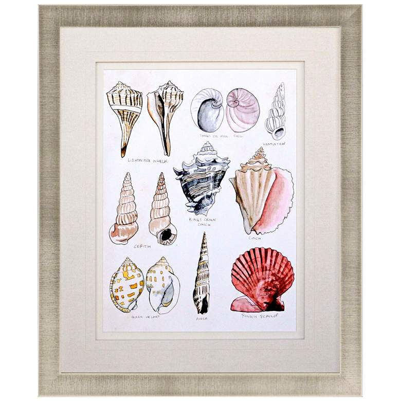"Seashell Sketch II 38"" High Framed Giclee Wall Art"