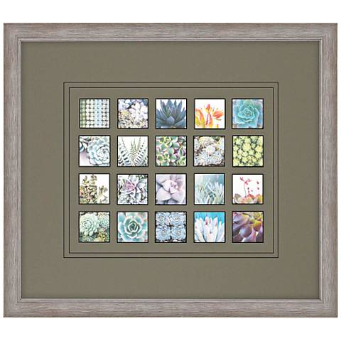 "Succulent Garden 34"" Wide Framed Wall Art"