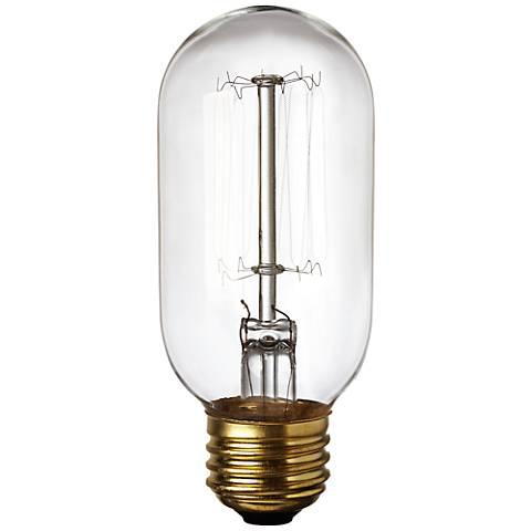 Edison Style 40 Watt T14 Clear Light Bulb