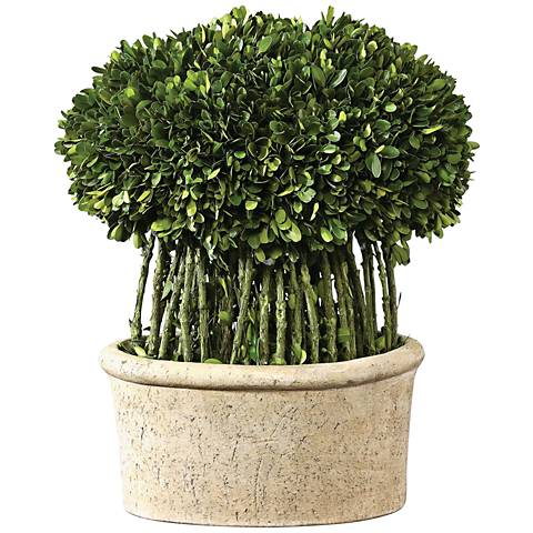 """Green Willow Boxwood Topiary 17"""" High Faux Plant in Planter"""