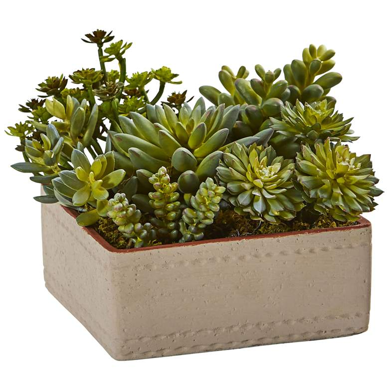 "Green Succulents 8"" Wide Faux Plants in Decorative Planter"