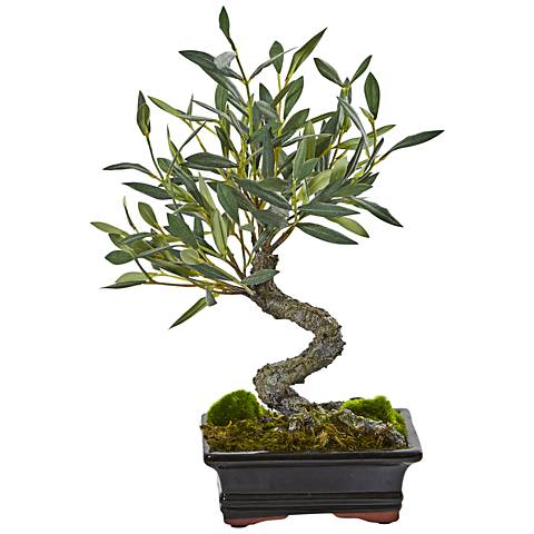 """Green Mini Olive Bonsai 13""""H Faux Plant in Ceramic Planter"""