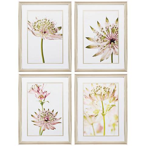 "Astrantia 24"" High 4-Piece Framed Wall Art Set"