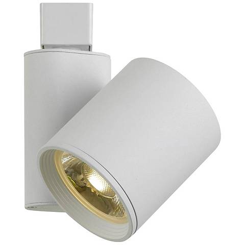 White 30 Watt LED Cylinder Medium Track Head
