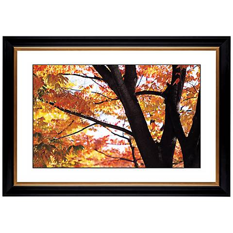 """Autumn Color Giclee 41 3/8"""" Wide Wall Art"""