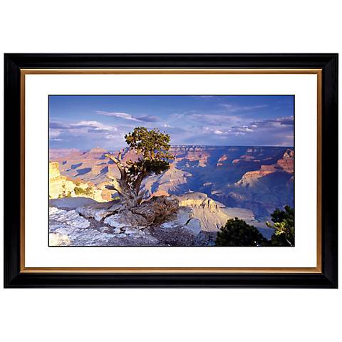 "Southwest Canyon Giclee 41 3/8"" Wide Wall Art"
