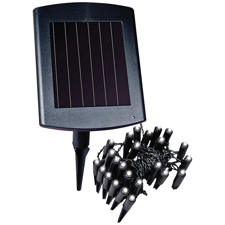 Black Outdoor Solar Powered LED Plant or Border Lights
