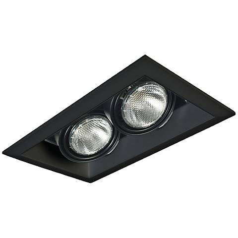 Eurofase Black Double Par 20 Recessed Light