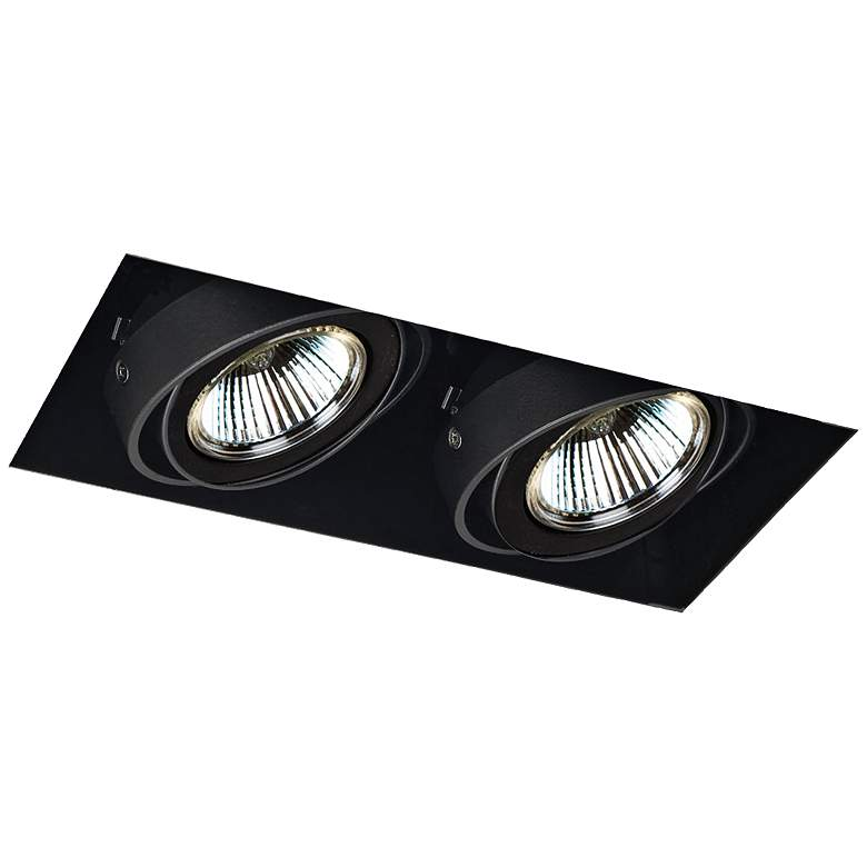 Eurofase Low Voltage Black Double Recessed Light