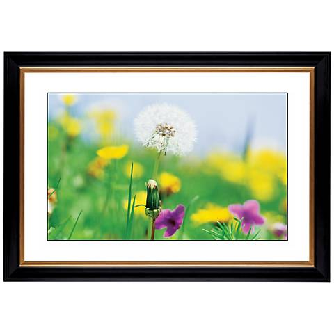 "Summer Meadow Giclee 41 3/8"" Wide Wall Art"