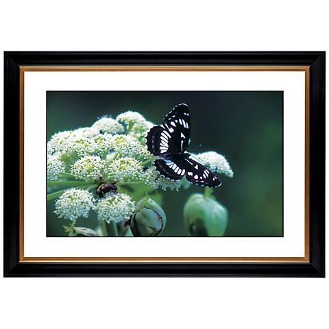 """Giclee 41 3/8"""" Wide Butterfly Flower Wall Art"""