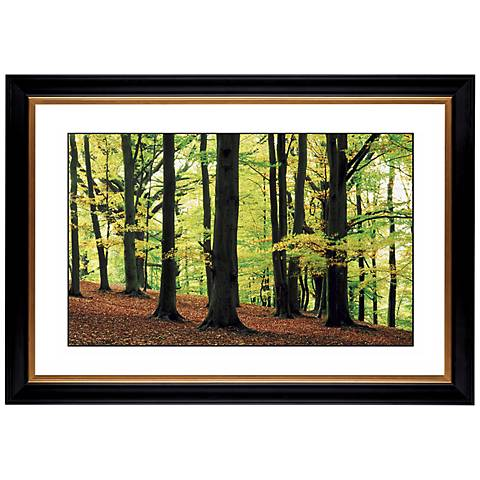 "Green Canopy Giclee 41 3/8"" Wide Wall Art"