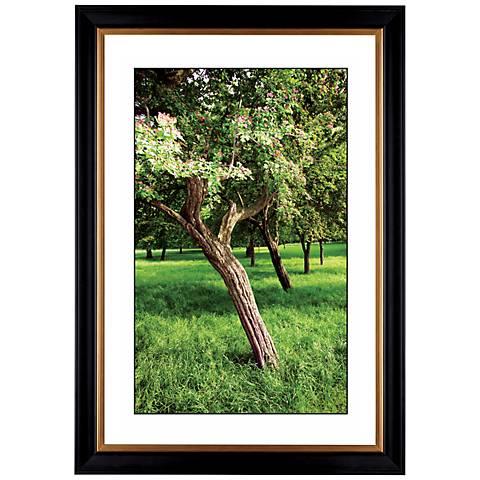 "Orchard Meadow  Giclee 41 3/8"" High Wall Art"