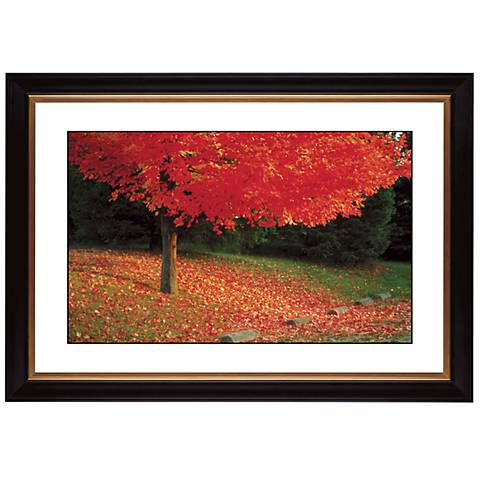 """Autumn Color Burst Giclee 41 3/8"""" Wide Wall Art"""