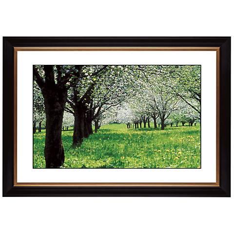 "Springtime Giclee 41 3/8"" Wide Wall Art"