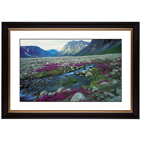 "Mountain Running Spring Giclee 41 3/8"" Wide Wall Art"
