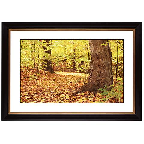"Autumn Carpet Giclee 41 3/8"" Wide Wall Art"