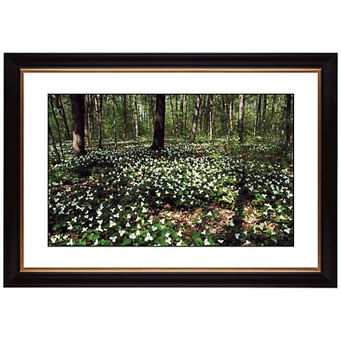 """Forest Flowers Giclee 41 3/8"""" Wide Wall Art"""