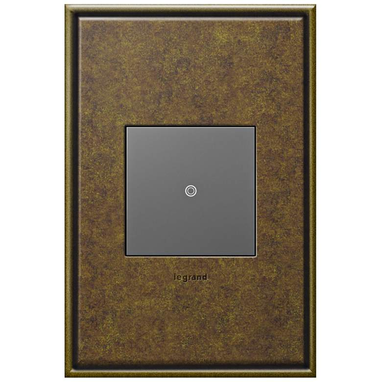 adorne Aged Brass 1-Gang Cast Metal Wall Plate