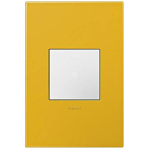 adorne Honey 1-Gang Wall Plate w/ Switch