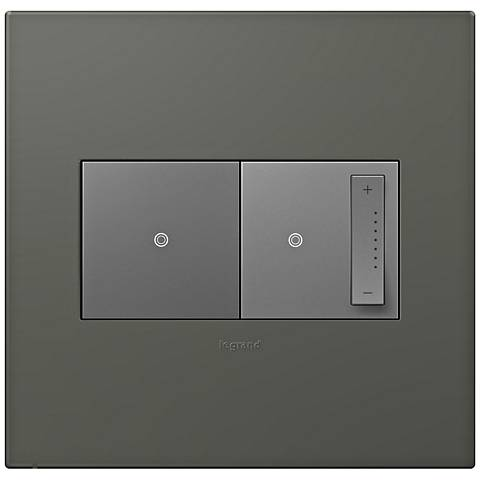 adorne Moss Grey 2-Gang Wall Plate w/ Switch and Dimmer