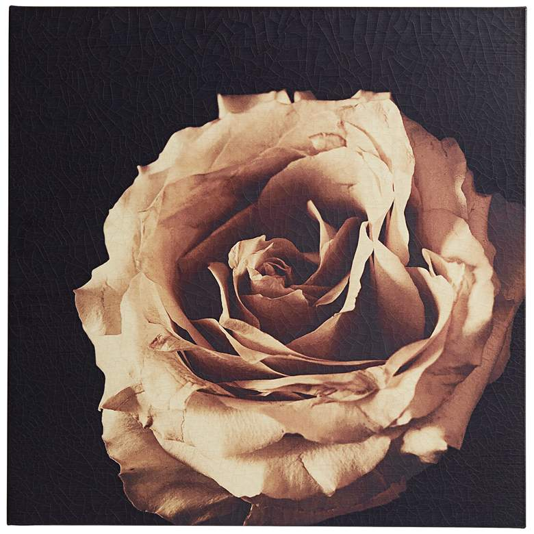 "January Rose 26"" Square Wall Art"