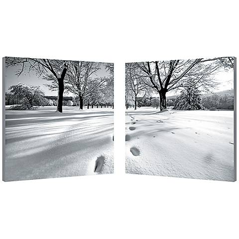 "Set of 2 Telltale Trail 19 3/4"" Square Canvas Wall Art"