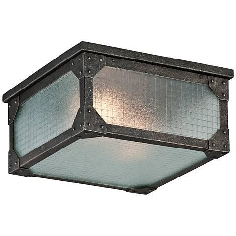 """Hoboken 14"""" Wide Indoor-Outdoor Ceiling Light"""