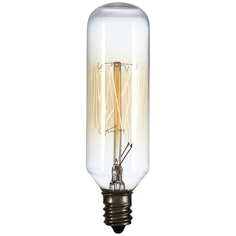 Edison Style 40 Watt T8 Tube Candelabra Base Light Bulb