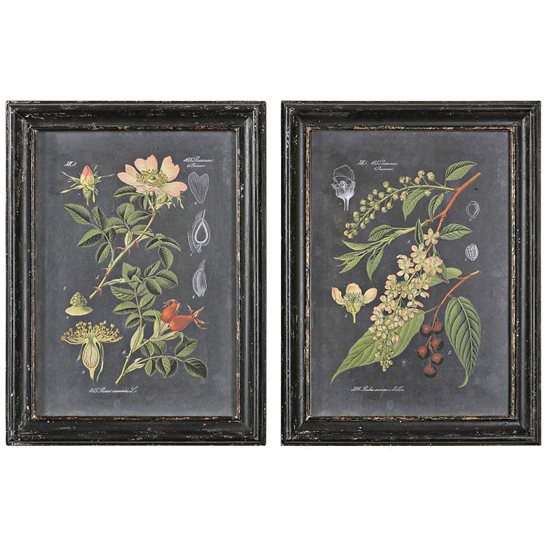 "Uttermost Midnight Botanicals 2-Piece 32 3/4"" High Set"