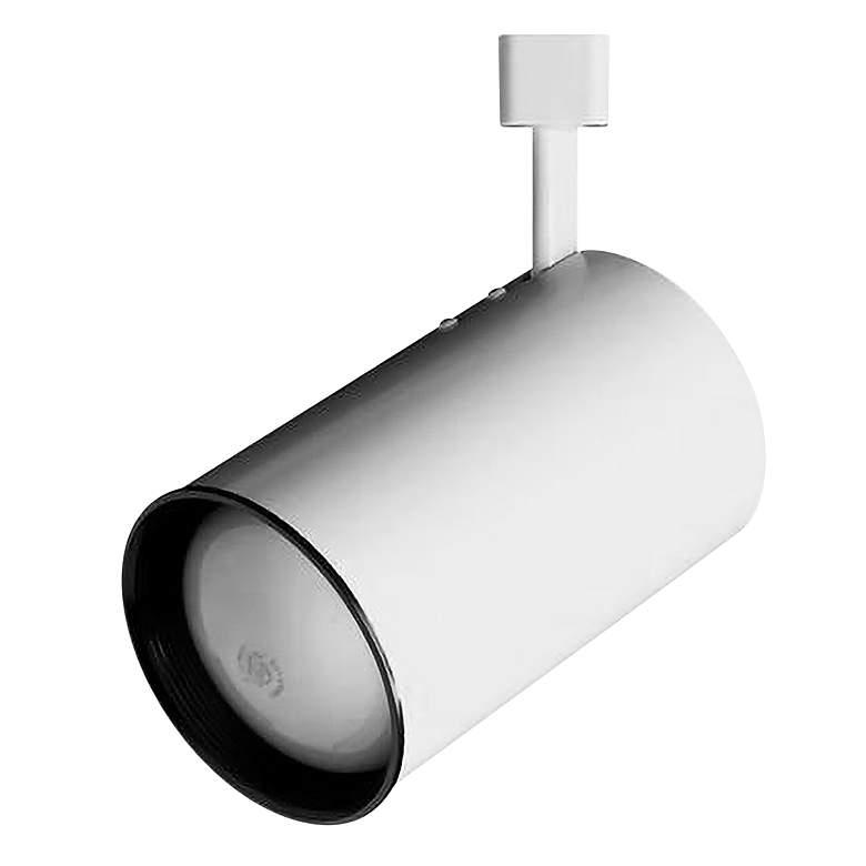 White PAR 30 Cylinder Track Head