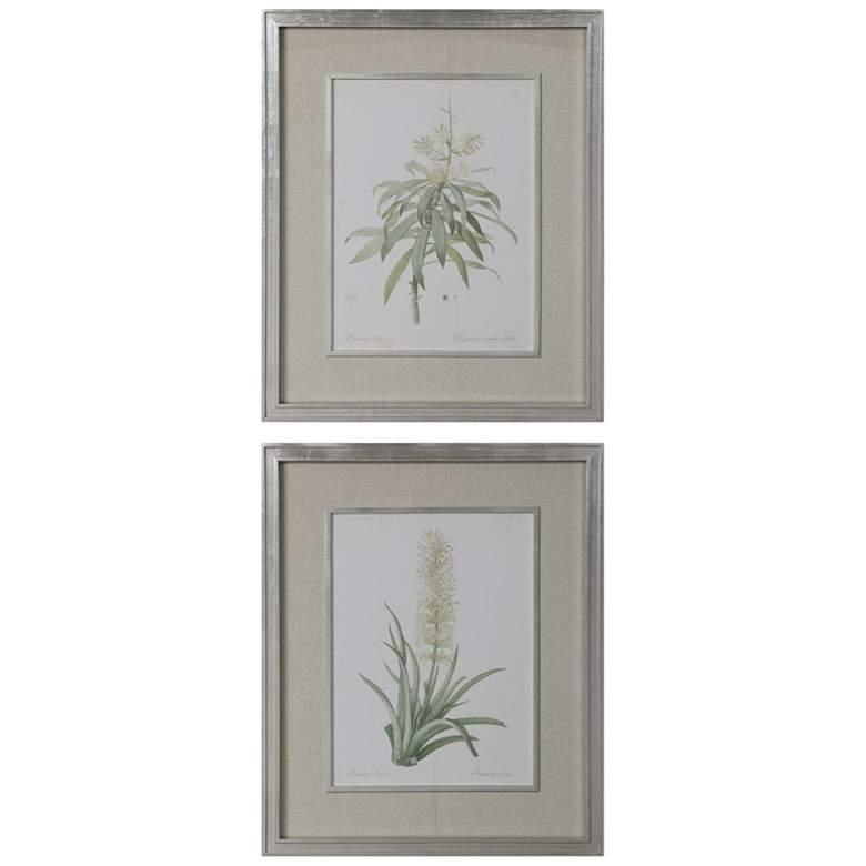 "Plant Study 34 3/4"" High 2-Piece Framed Wall Art Print Set"