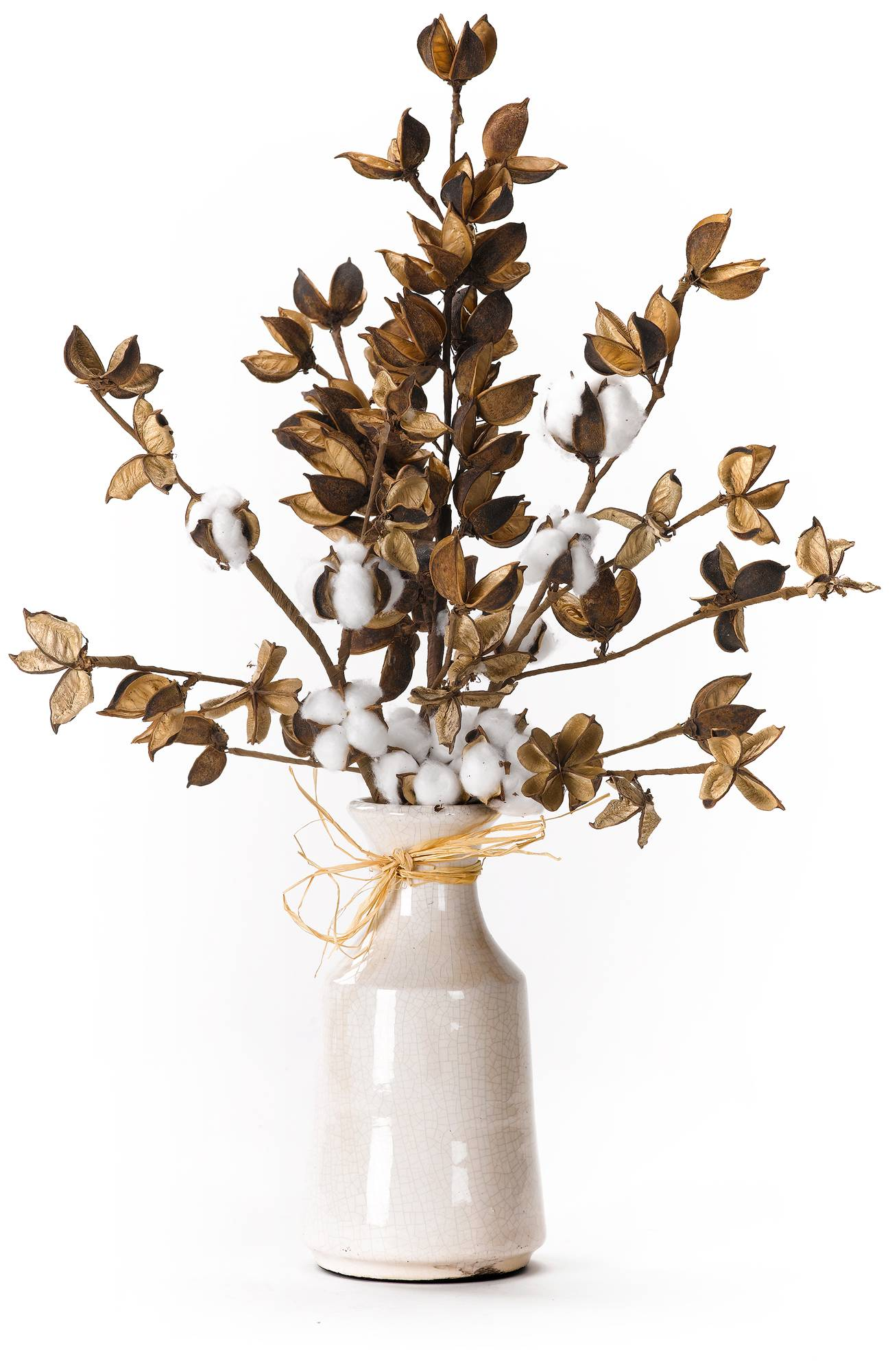 Cotton Branches 23