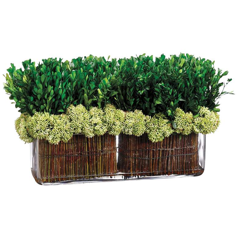 "Green Preserved Boxwood Topiary 18"" Wide Faux Plant in Vase"