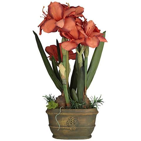 Red Triple Amaryllis Flower Arrangement