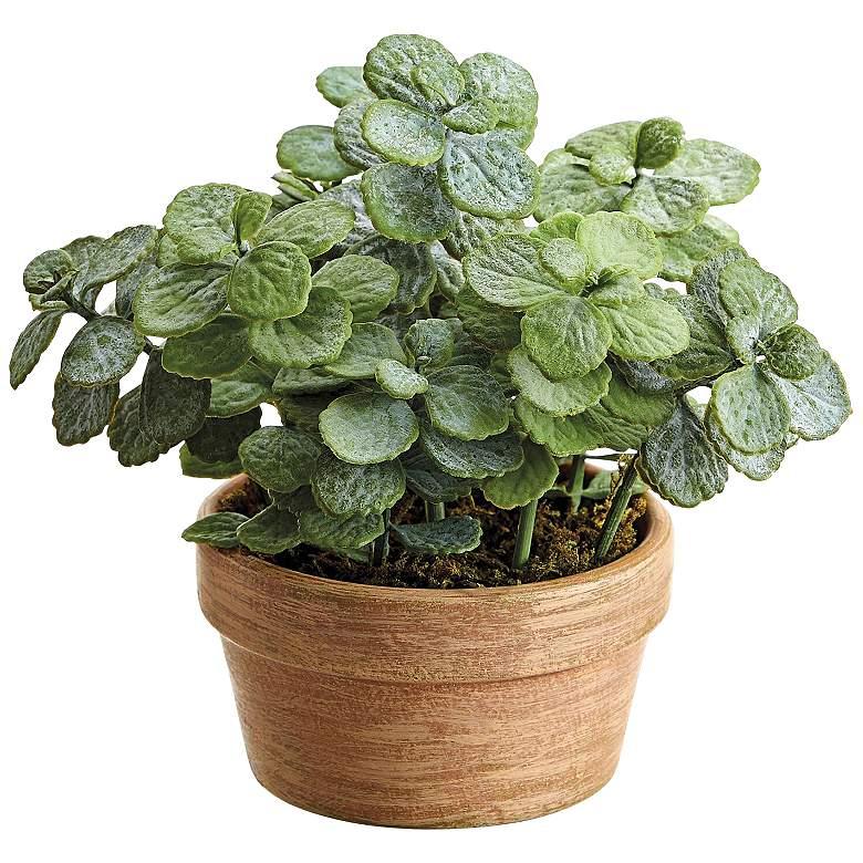 "Green Mini Jade 6 1/2"" High Faux Plant in Tera Cotta Pot"