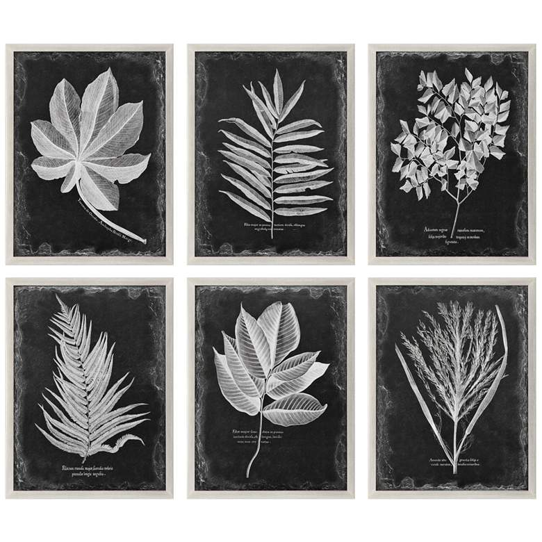 "Uttermost Foliage 33 3/4"" Wide 6-Piece Framed Wall Art Set"