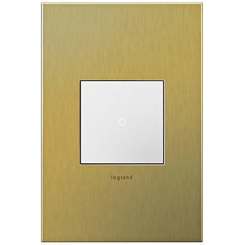 adorne Brushed Brass 1-Gang Cast Metal Wall Plate with Switch