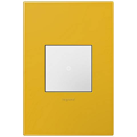 adorne Honey 1-Gang Wall Plate w/ Switch