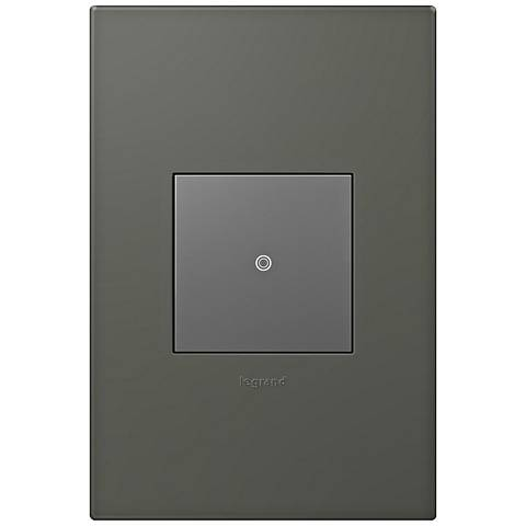 adorne Moss Grey 1-Gang Wall Plate w/ Switch