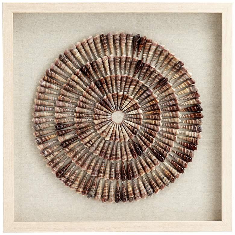 "Sea Shell Circles 23 1/2"" Square Framed Wall Art"